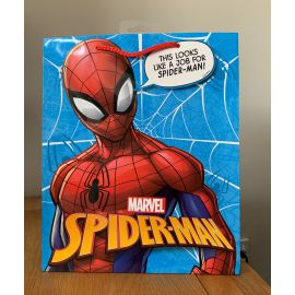 LARGE  GIFT BAGS SPIDER-MAN PK OF 6