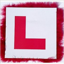 HEN PARTY L PLATE BADGE